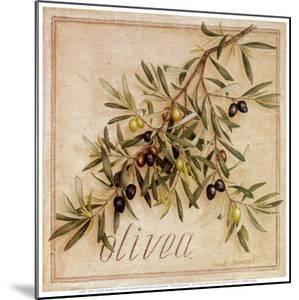 Olivea by Vincent Jeannerot