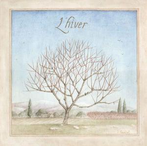Arbre en Hiver by Vincent Perriol