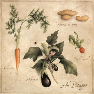 Au Potager by Vincent Perriol