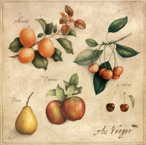 Au Verger by Vincent Perriol
