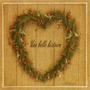 Coeur Une Belle Histoire by Vincent Perriol