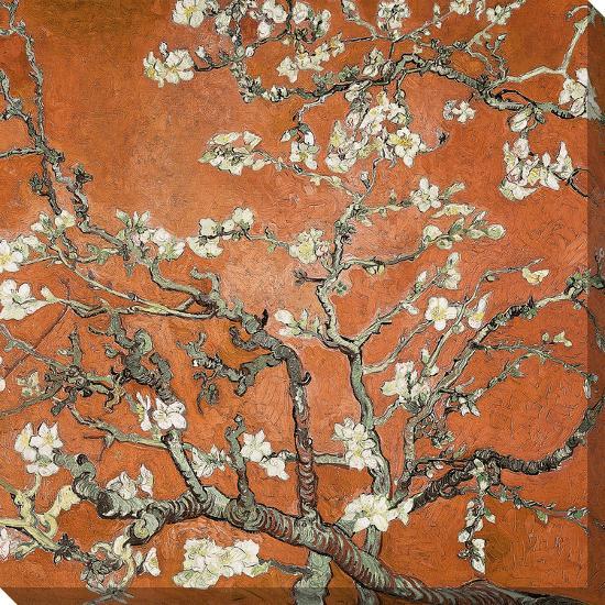Almond Blossom 1890 Orange Color Variation Stretched