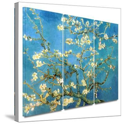 Almond Blossom 3 piece gallery-wrapped canvas by Vincent van Gogh