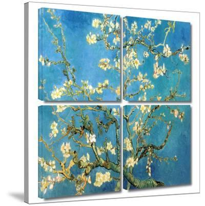 Almond Blossom 4 piece gallery-wrapped canvas