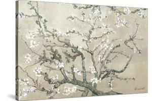 Almond Branches in Bloom, San Remy, c.1890 (tan) by Vincent van Gogh