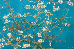 Almond Branches in Bloom, San Remy, c.1890 by Vincent van Gogh