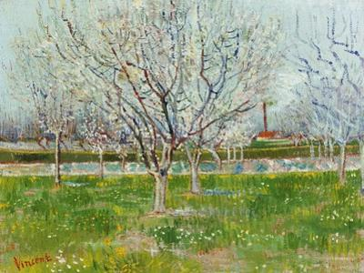 Blossoming Orchard, 1888