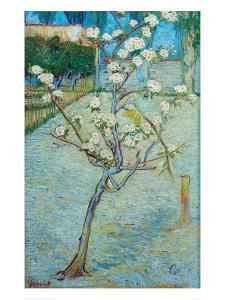 Blossoming Pear Tree by Vincent van Gogh