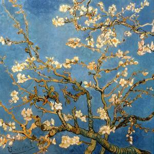 Branches fleuries d'amandier (Détail) by Vincent van Gogh