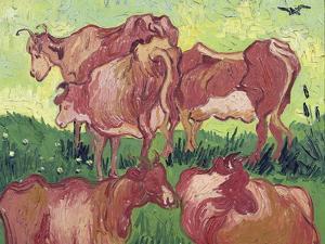 Cows, c.1890 by Vincent van Gogh