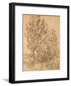 Cypresses, 1889 by Vincent Van Gogh by Vincent Van Gogh