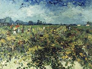 Der Gruene Weingarten, 1888 by Vincent van Gogh