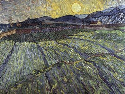 Enclosed Field with Rising Sun Saint-Remy by Vincent van Gogh