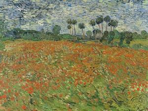 Field of Poppies, Auvers-Sur-Oise, 1890 by Vincent van Gogh