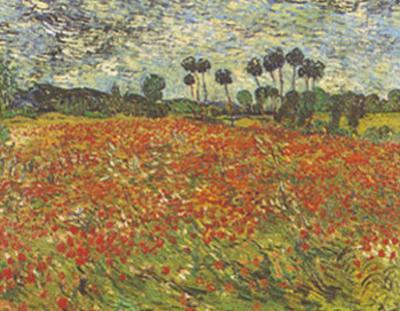 Field of Poppies Auvers-sur-Oise by Vincent van Gogh