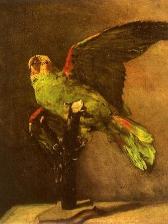Green Parrot on Perch, 1886 by Vincent van Gogh