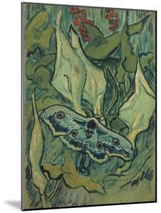 Green Peacock Moth (The Emperor Mot), 1889 by Vincent van Gogh