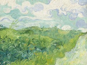 Green Wheat Fields, Auvers, 1890 by Vincent van Gogh