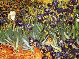 Iris Garden by Vincent van Gogh