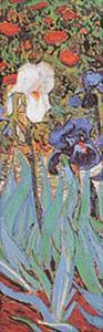 Irises Detail 2 by Vincent van Gogh