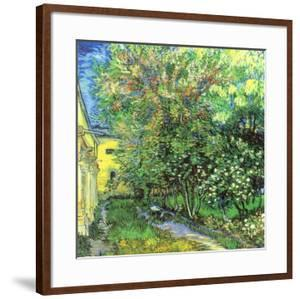 Jardin de l'hospice Saint-Paul by Vincent van Gogh