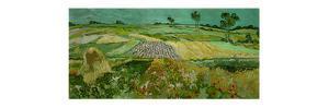 La plaine d'Auvers. Oil (June 1890) 50 x 101 cm. by VINCENT VAN GOGH