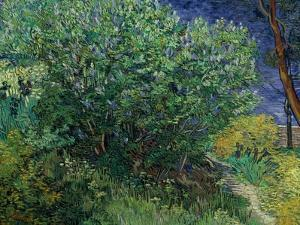 Lilac Bush, 1889 by Vincent van Gogh