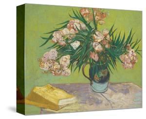 Vincent Van Gogh Plants Stretched Canvas Prints Art Prints