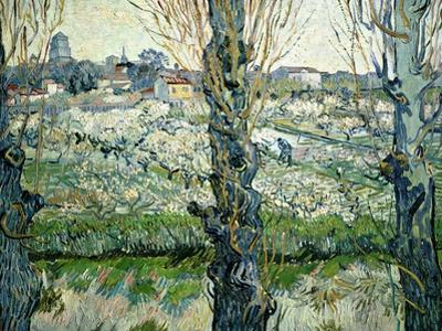 Orchard in Blossom with a View of Arles, 1889