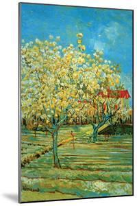 Orchard with Cypress by Van Gogh by Vincent van Gogh
