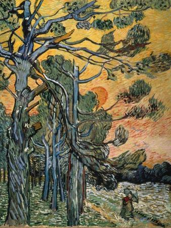 Pine Trees at Sunset, 1889 by Vincent van Gogh