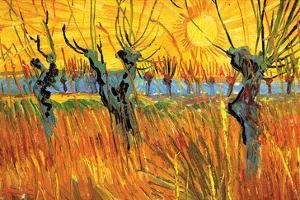 Pollard Willows at Sunset by Vincent van Gogh