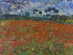 Poppy Field, 1890 by Vincent van Gogh