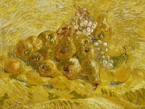 Quinces, Lemons, Pears and Grapes, 1887-1888 by Vincent van Gogh