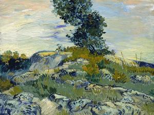 Rocks, 1888 by Vincent van Gogh