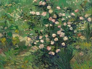 Roses, 1889 by Vincent van Gogh
