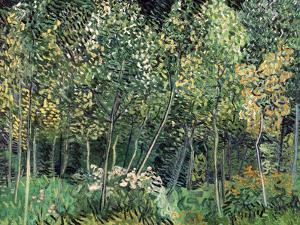 Small forest, July 1890 by Vincent van Gogh