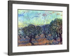 The Olive Grove, c.1889 by Vincent van Gogh
