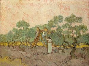 The Olive Pickers, Saint-Remy, 1889 by Vincent van Gogh