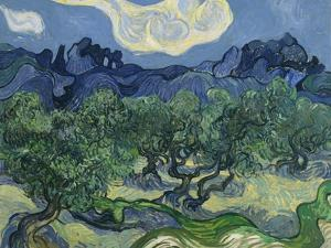 The Olive Trees. 1889 by Vincent van Gogh