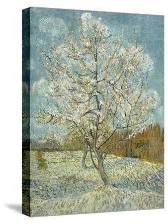 The Pink Peach Tree, 1888