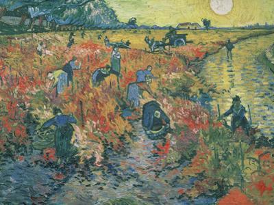 The Red Vineyard at Arles, 1888 by Vincent van Gogh