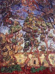 Trees in the Garden of Saint-Paul Hospital by Vincent van Gogh
