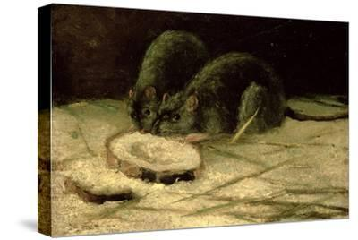 Two Rats, C.1884
