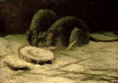 Two Rats, C.1884 by Vincent van Gogh