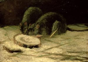 Two Rats, C.1884 by Vincent van Gogh