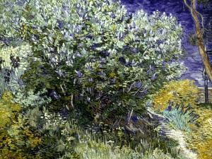 Van Gogh: Lilacs, 19Th C by Vincent van Gogh