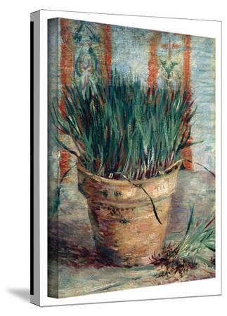Vincent van Gogh 'Chives' Wrapped Canvas Art
