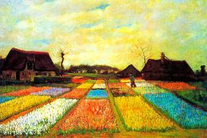Vincent van Gogh Holland Flower Bed by Vincent van Gogh