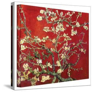 Vincent van Gogh 'Red Blossoming Almond Tree' Canvas by Vincent van Gogh